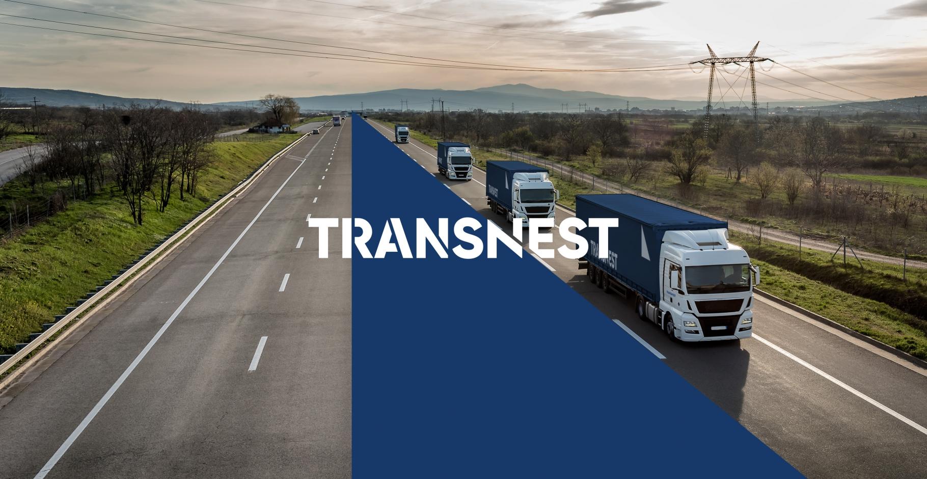 Transnest. Logotipo, firminio stiliaus ir svetainės sukūrimas