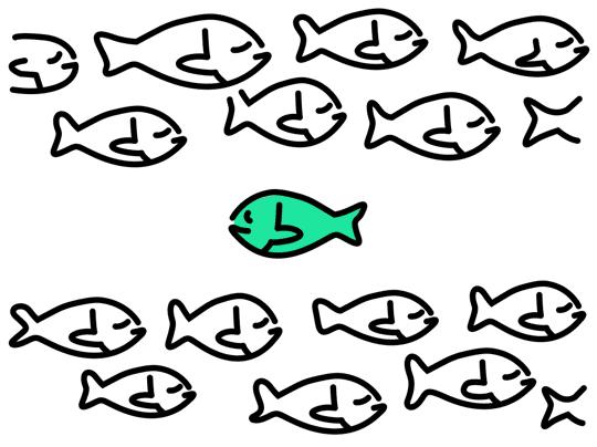 Logotipų kokybė ir variantų skaičius
